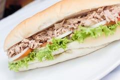 Baguette fraîche de sandwich à thon Photographie stock libre de droits