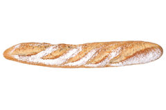 Baguette. French bread / baguette isolated on white background Stock Photography
