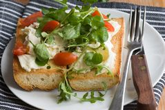 Baguette with mozzarella and salad Royalty Free Stock Image