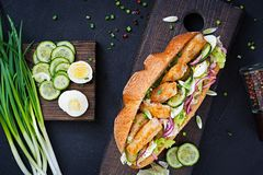 Baguette sandwich with fish, egg, pickled onions and lettuce leaves. Stock Images