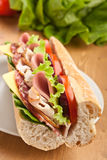 Baguette sandwich with meat, vegetables and cheese Stock Image