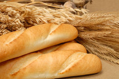 Baguette and wheat Royalty Free Stock Image