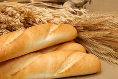 Baguette y trigo Imagen de archivo libre de regalías