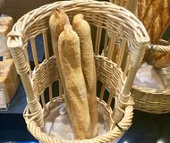 Baguettes. Bread in Basket. Three breadloafs on tray. Bread is a staple food prepared from a dough of flour and water, usually by baking. Throughout recorded stock image