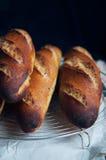 Baguettes franceses del artesano Fotos de archivo
