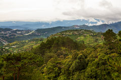 Baguio Mountain Landscape Royalty Free Stock Images
