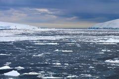 Bahía antártica congelada Imágenes de archivo libres de regalías