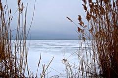 Bahía congelada Imagen de archivo libre de regalías