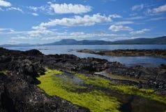 Bahía de Bantry en agosto Imagenes de archivo