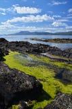 Bahía de Bantry en agosto foto de archivo