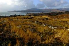 Bahía de Bantry que mira hacia Sugar Loaf Fotos de archivo