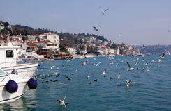 Bahía de Bebek, Estambul Foto de archivo libre de regalías