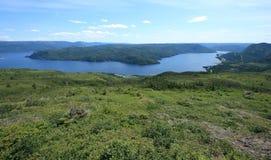 Bahía de Bonne de la colina del Partridgeberry Fotografía de archivo