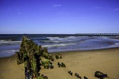 Bahía de Chesapeake Imágenes de archivo libres de regalías