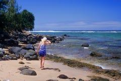 Bahía de exploración de Hanalei Foto de archivo libre de regalías