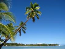 Bahía de Fiji Foto de archivo
