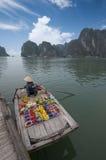 Bahía de Halong, Vietnam fotos de archivo libres de regalías