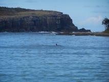 Bahía de Jervis Imagenes de archivo