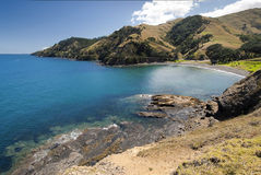 Bahía de la cabra, Coromandel peninsular, Nueva Zelanda Fotos de archivo