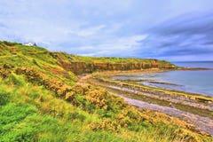Bahía de la ensenada con los acantilados en la costa este de Escocia Imagen de archivo