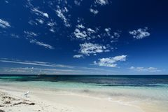 Bahía de la masopa Isla de Rottnest Australia occidental australia fotos de archivo