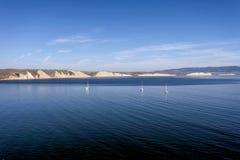 Bahía de los patos machos Imagen de archivo libre de regalías