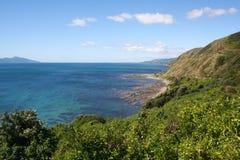 Bahía de Pukeura Imagen de archivo
