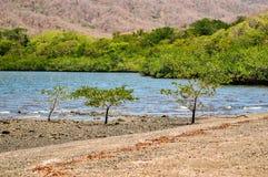 Bahía de Santa Elena Fotografía de archivo