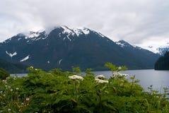 Bahía de Sitka Imágenes de archivo libres de regalías