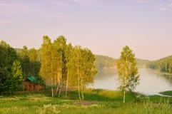 Bahía del lago con los abedules en el primero plano Imagen de archivo
