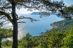Bahía del Mar Negro y árbol de pino en las montañas crimeas Imagen de archivo libre de regalías