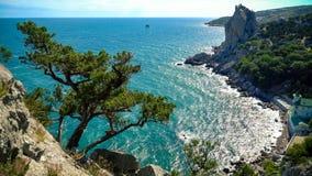 Bahía del Mar Negro y árbol del enebro en las montañas crimeas Fotos de archivo