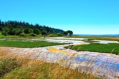 Bahía del misterio, isla de Marrowstone Península olímpica Estado de Washington imagen de archivo libre de regalías