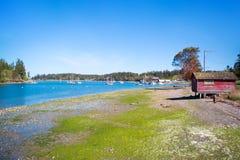 Bahía del misterio, isla de Marrowstone Península olímpica Estado de Washington foto de archivo libre de regalías