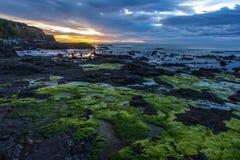 Bahía del objeto curioso. Mar en la isla del sur Newzealnd de la costa meridional Imagen de archivo