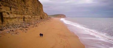 Bahía del oeste de la costa jurásica de Dorset Acantilado, vacaciones imágenes de archivo libres de regalías
