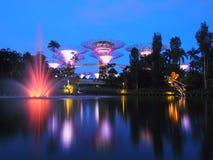BAHÍA del PUERTO DEPORTIVO, SINGAPUR, el 30 de mayo de 2015: Noche grande de la demostración de la luz del árbol con la fuente en Foto de archivo