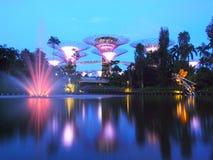 BAHÍA del PUERTO DEPORTIVO, SINGAPUR, el 30 de mayo de 2015: Noche grande de la demostración de la luz del árbol con la fuente en Fotografía de archivo