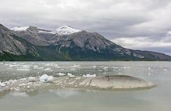 Bahía glacial en un día tranquilo Fotografía de archivo