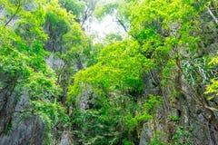 Bahía grande de Phang Nga de la montaña foto de archivo libre de regalías