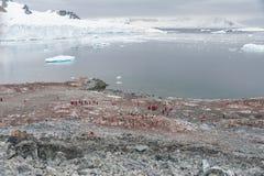 Bahía hermosa en la Antártida Fotografía de archivo libre de regalías