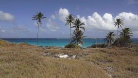 Bahía inferior, Barbados almacen de metraje de vídeo
