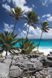 Bahía inferior, Barbados, las Antillas Foto de archivo libre de regalías