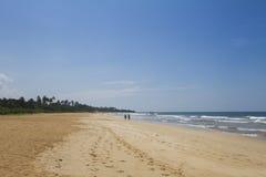 Bahía salvaje con pares Fotos de archivo libres de regalías