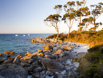 Bahía Tasmania de Binalong Foto de archivo libre de regalías