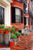 Bahía trasera Boston en primavera Foto de archivo libre de regalías