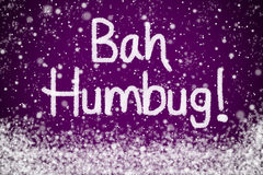 Bah Humbug Purple Christmas Message Royalty Free Stock Images