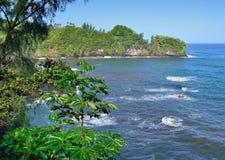 Bahía de Onomea en Hawaii Foto de archivo libre de regalías