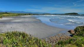 Bahía escénica de Tauranga de la colonia de sello en Nueva Zelanda Foto de archivo