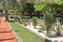 Bahai庭院包括区域用仙人掌、丝兰和龙舌兰 免版税库存照片